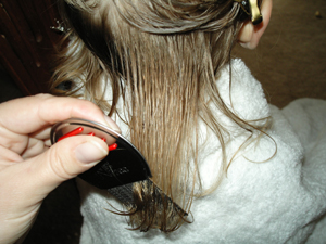 Professional Head Lice Removal Service Los Angeles